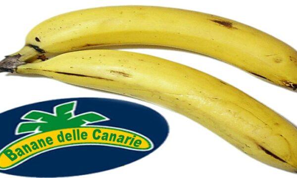Banane delle Canarie